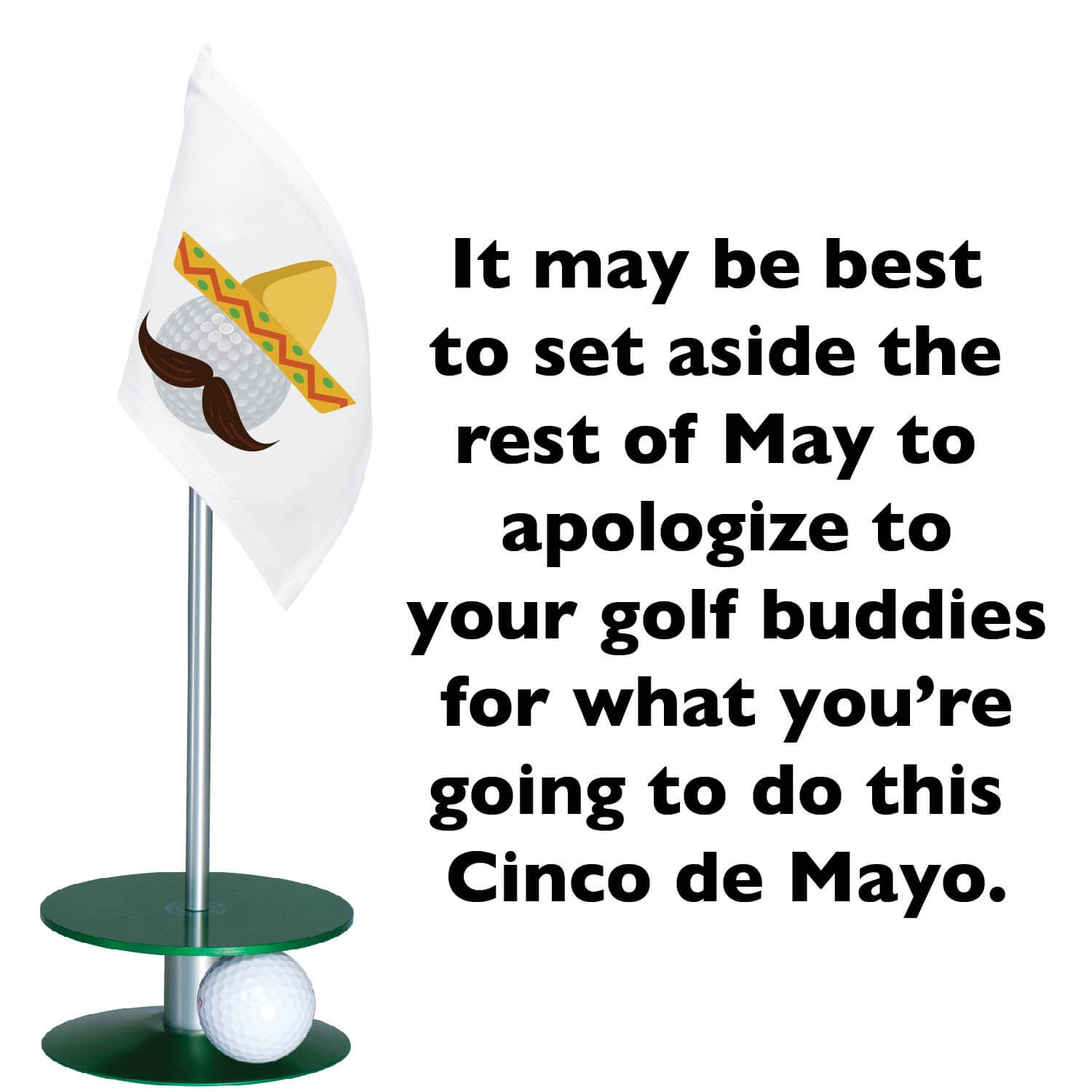 Cinco de Mayo Quotes Sayings Images USA MAXICO (1)