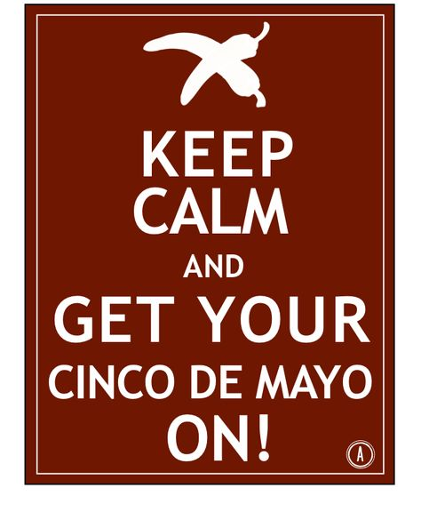 Cinco de Mayo Quotes Sayings Images USA MAXICO (3)