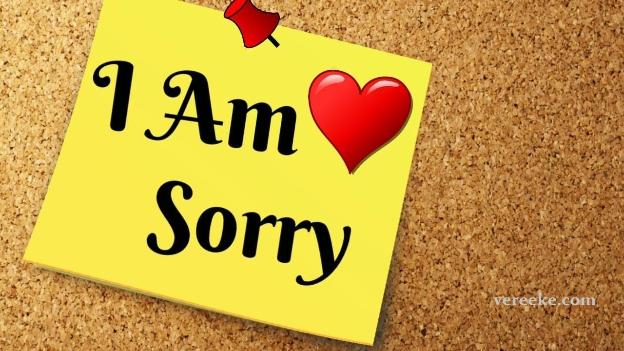 I m Sorry Paragraph for Her