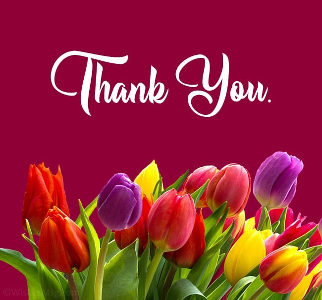 Thank You Quotes Greetings
